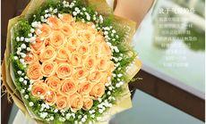 千寻鲜花33朵玫瑰花束鲜花
