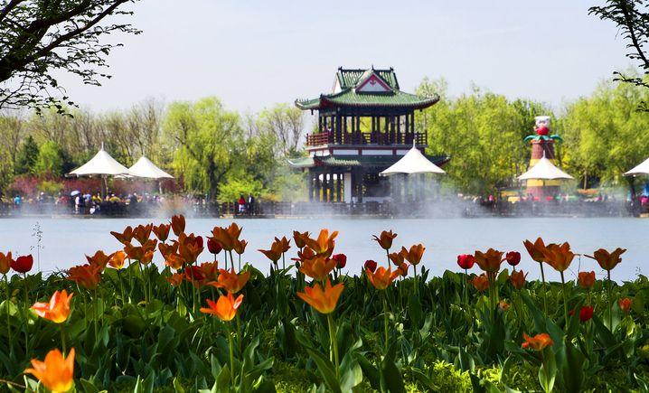 北京国际鲜花港 - 大图