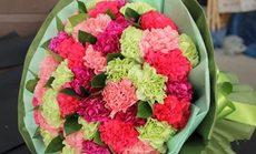 花藤鲜花多款康乃馨花束