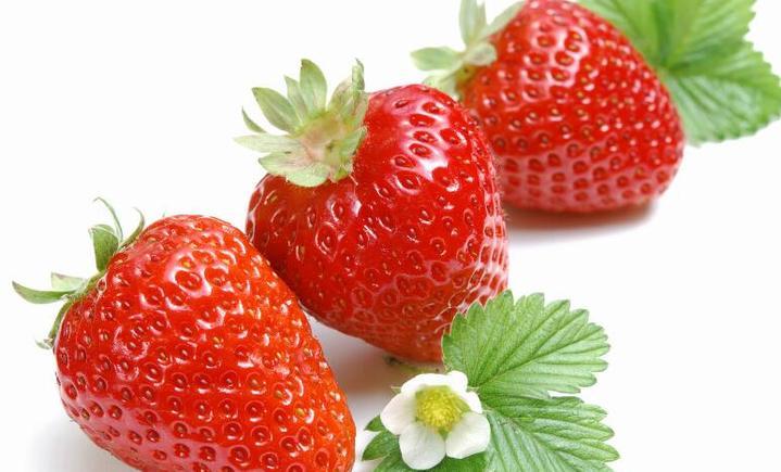 兴寿沙坨草莓基地小李采摘园