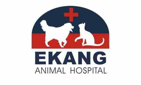 依康动物医院
