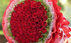 迎春花厅66朵玫瑰花束