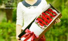 玫瑰之约19朵康乃馨礼盒