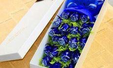 花为媒蓝色妖姬礼盒