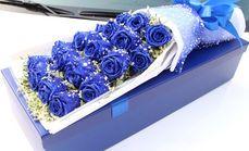爱琴海19支蓝色妖姬礼盒