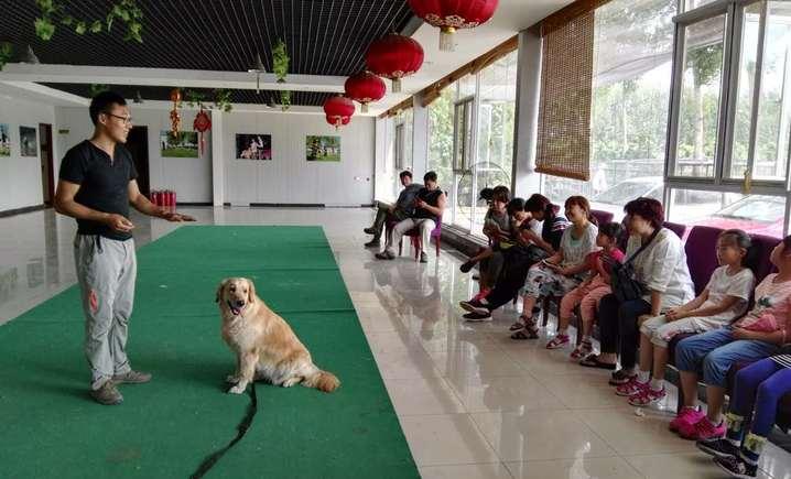 北京宠乐会宠物学校 - 大图