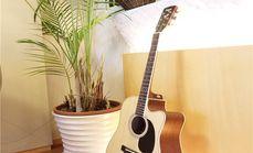爱不童成人吉他深度体验课