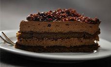 可可树经典甜品蛋糕