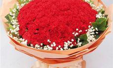 梓怡花坊33朵红康乃馨花束