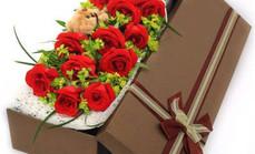 爱花苑11朵玫瑰套餐