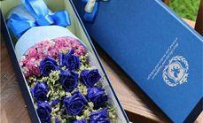 爱花苑11支蓝色妖姬礼盒