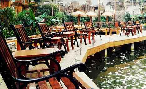 南宫五洲植物乐园南宫鹦鹉园