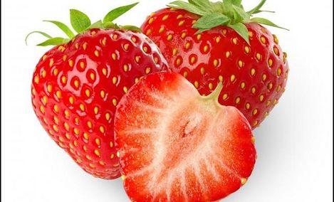 鑫诚红颜奶油草莓采摘 - 大图