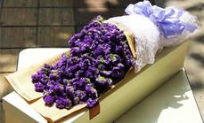 爱慕鲜花勿忘我鲜花礼盒