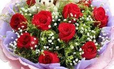 蔷薇11枝玫瑰十小熊