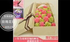 玫瑰花坊19朵康乃馨