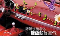 京鄂汽车消毒10元单人服务