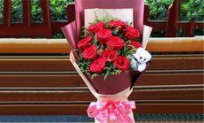 锦尚临沂11红玫瑰2小熊