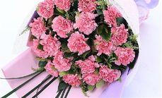 吾爱鲜花康乃馨
