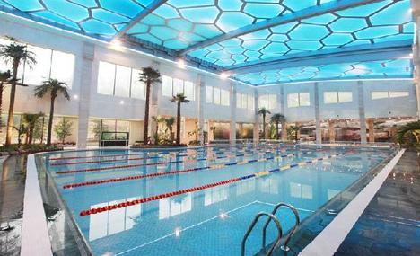 泳校学游泳培训招生机构