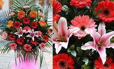 卉如鲜花单层开业花篮