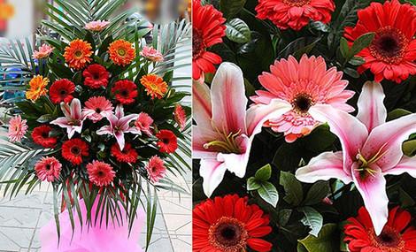 卉如鲜花 - 大图
