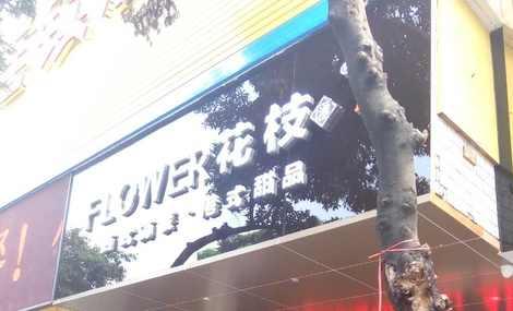 flower花枝