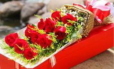 莱薇花坊19只玫瑰花束