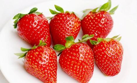 豫丰草莓采摘园