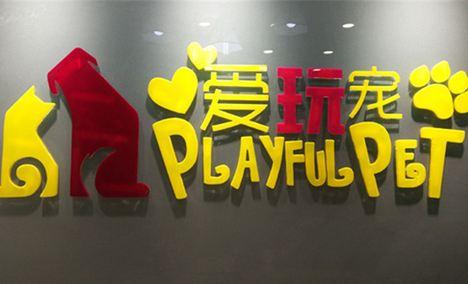 爱玩宠PlayFulPet
