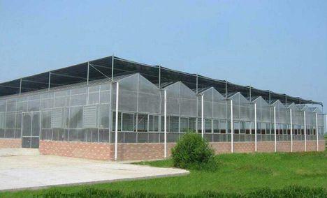 惠农温室大棚