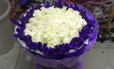 燕子花店52朵白玫瑰