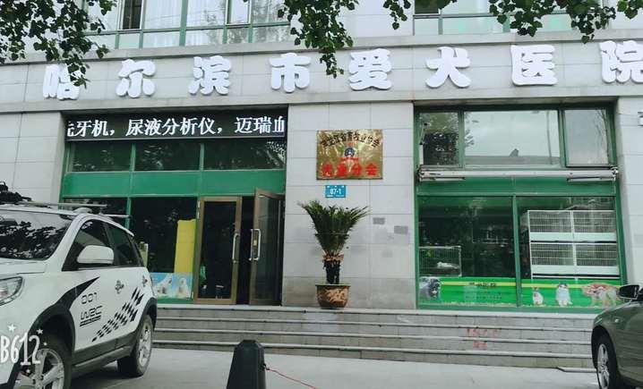 哈尔滨市爱犬医院