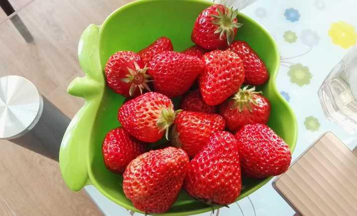 刘师傅草莓采摘园