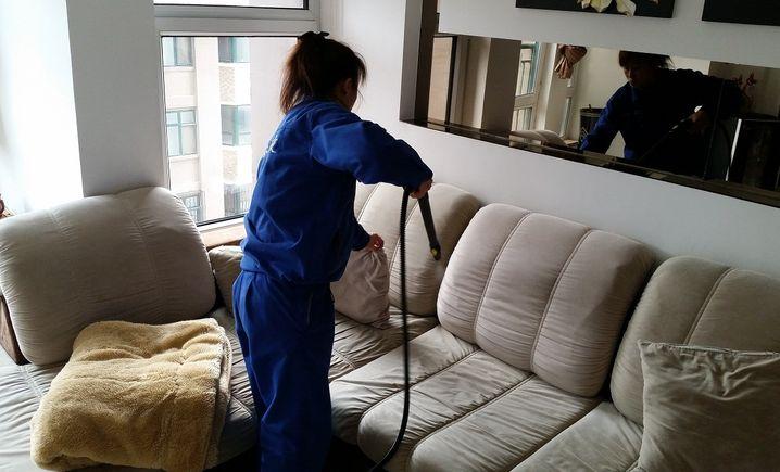 洁力源室内空气检测治理专家