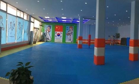 奇艺跆拳道俱乐部
