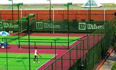 三原色网球培训