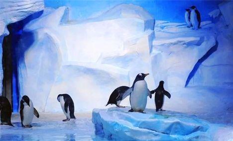 极地海洋世界