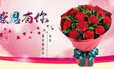 爱之裳11枝康乃馨花束