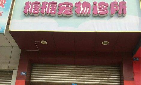 糖糖宠物诊所