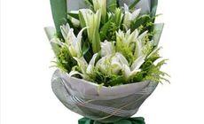 美涵鲜花22朵百合
