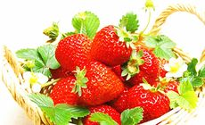玲珑庄园草莓采摘