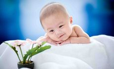 绿竹印象儿童摄影套系