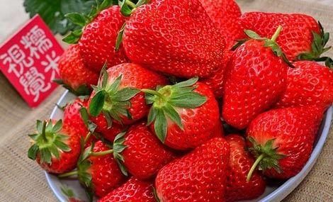俊峰草莓园