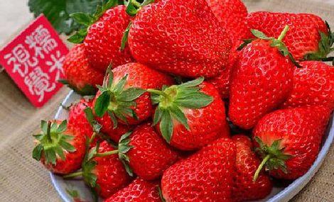 翔翔草莓园