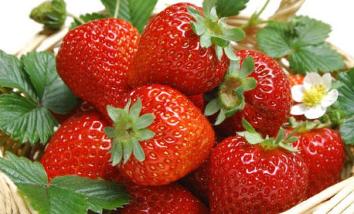 马杨草莓园