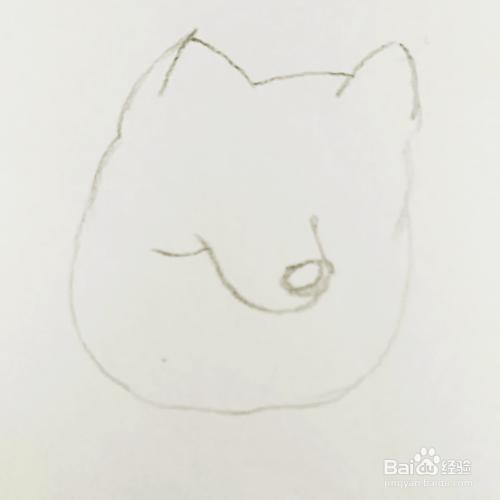 简笔画 晒太阳的狗狗的画法