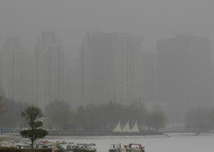 如何预防雾霾伤害图片