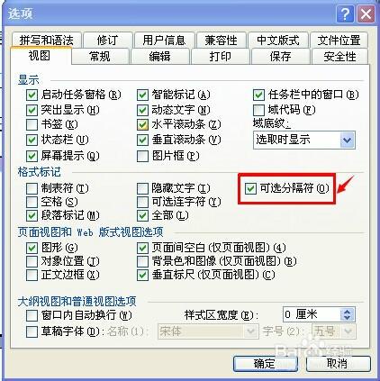 4 经过如上操作后,我们在文档看到了如下图的分节符.