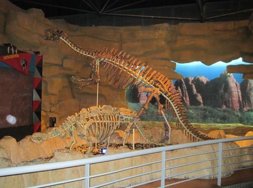 怎样安排常州恐龙园两日游
